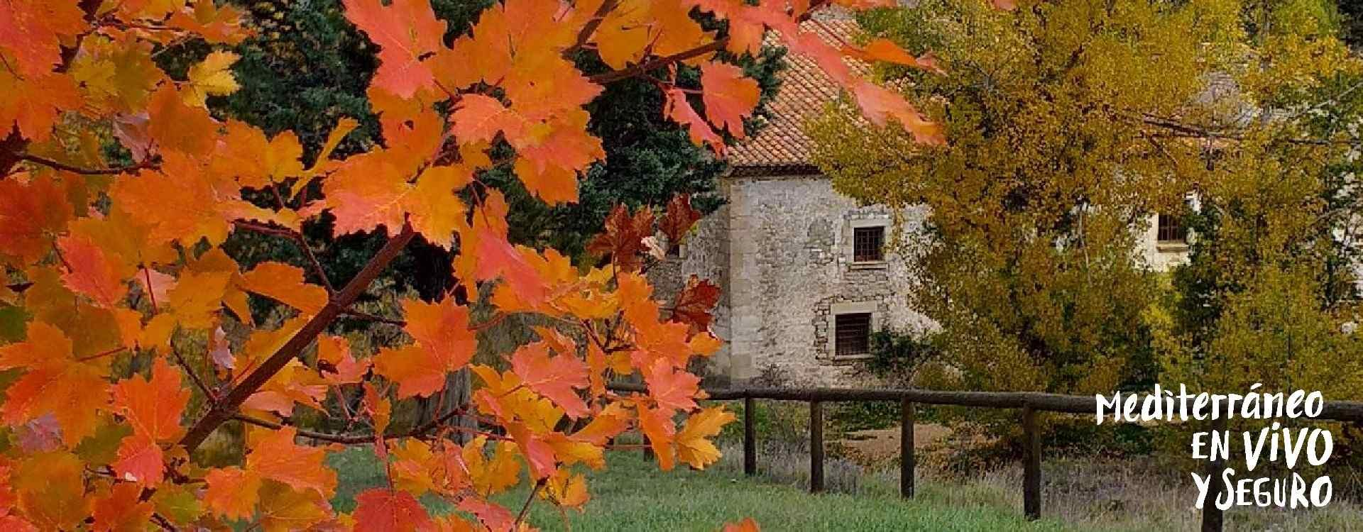Autumn in the Penyagolosa in the province of Castellón